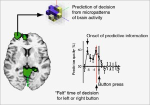 Brain areas that predict decisions.  By John-Dylan Haynes.  Wired.