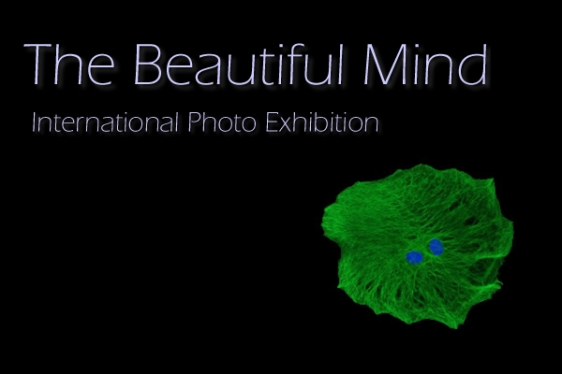 beautiful-mind-exhibit