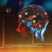 Brain Puzzle