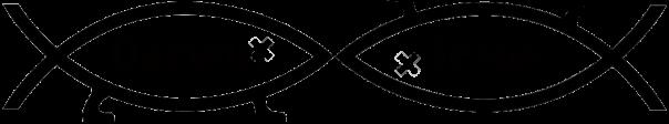 creation_vs_evolution